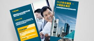 Flyer China Service Group